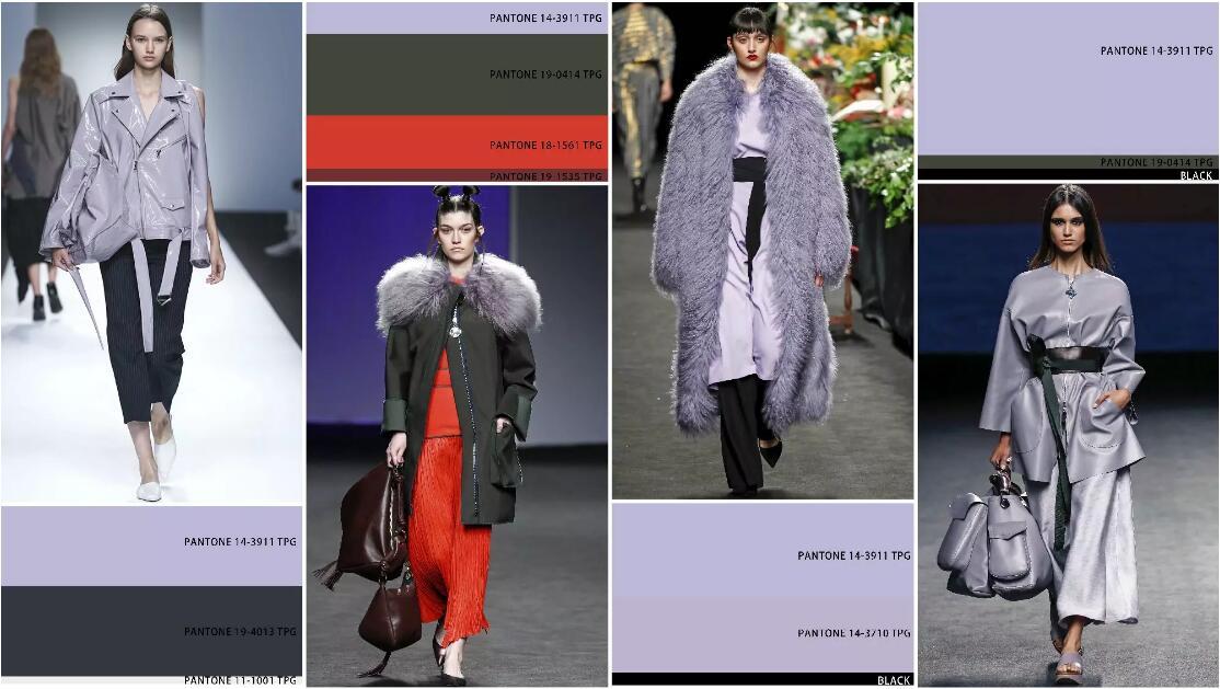 purple color coat.jpg