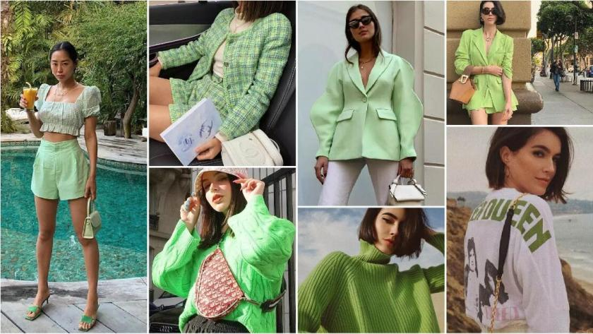 INS Fashion Bloggers's Avocado