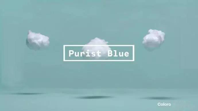 Purist Blue.jpg