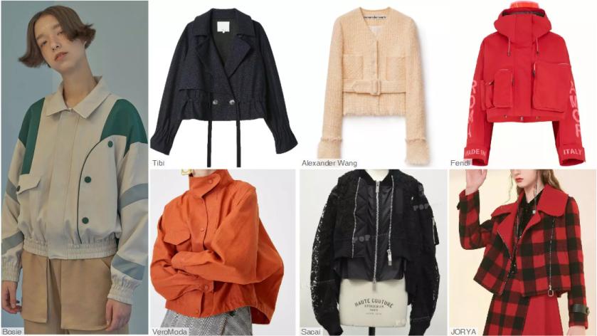 the jaket