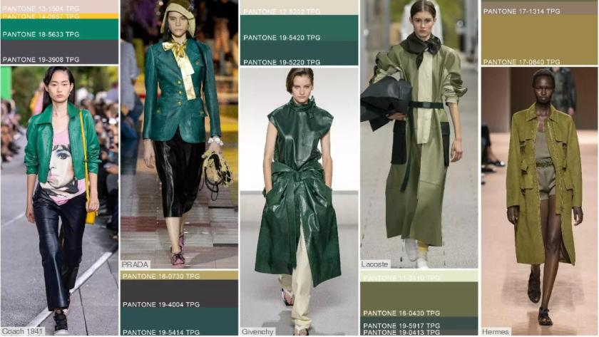 Key Color Tones- Green Tones
